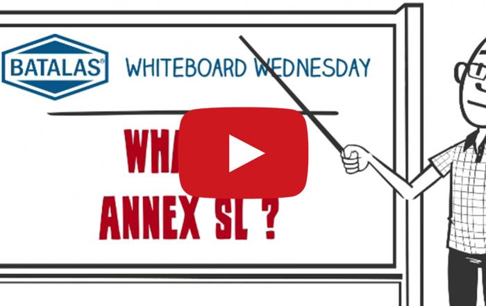 What is Annex SL