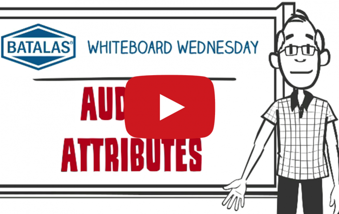Auditor attributes