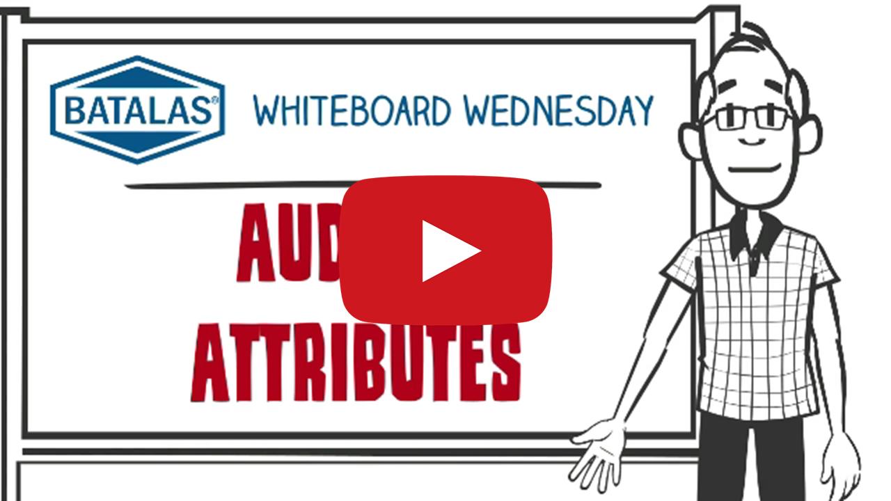 Auditor attributes