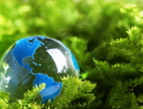 Is your business good for the environment?